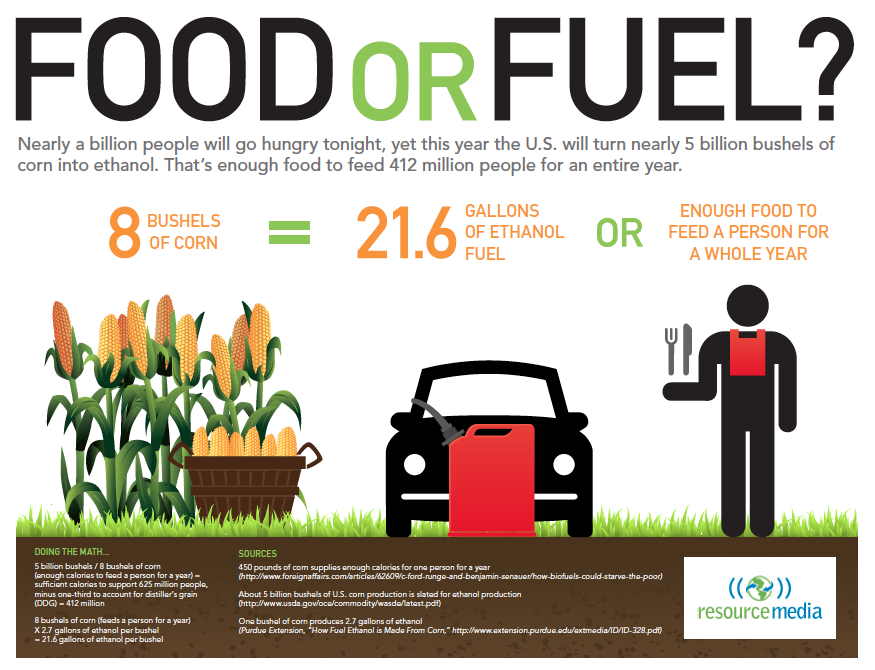 Image result for corn fuel or food